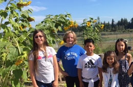 Featured Event: Farmington View and Liberty Earn Green Schools Certification